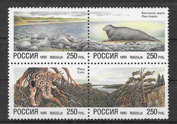 Sellos fauna protegida de Rusia
