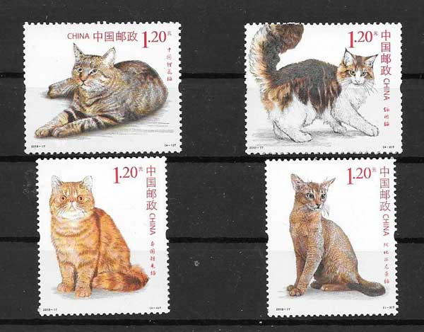 cats philately China 2013